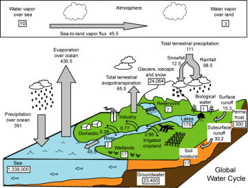 Ecological Foundations of Landscape Stewardship