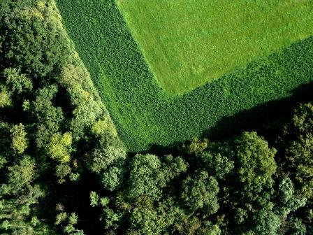 Gardening the Cultural Landscapes of European Heritage